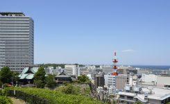 横須賀市就活情報登録伝達事業(わたしの終活登録)